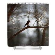 Img_2287 - Eastern Bluebird Shower Curtain
