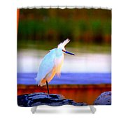 Img_9181 - Snowy Egret Shower Curtain