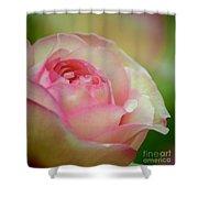 Imitation Love - Paper Rose Shower Curtain