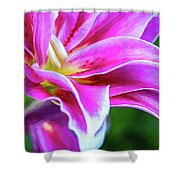 Immerse Yourself - Paint Shower Curtain