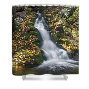 Imp Trail Cascade Shower Curtain