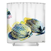 Imperial Angels Shower Curtain
