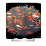 Imperial Koi Pond With Black Swirling Frame Shower Curtain