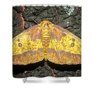 Imperial Moth Shower Curtain