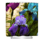 Impossible Irises Shower Curtain