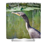 Impressionable Cormorant Shower Curtain