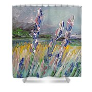Impressionism Fantasy Field Shower Curtain