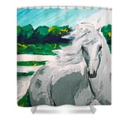 Impressionism Horse Shower Curtain