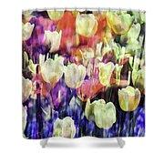 Impressionist Floral Xxxvii Shower Curtain