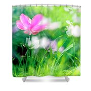 Impressionistic Photography At Meggido 3 Shower Curtain
