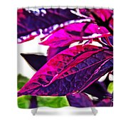 Impressionistic Purple Leaves Shower Curtain