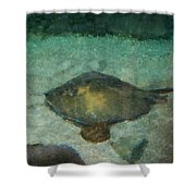 Impressionistic Sting Ray - 003 Shower Curtain