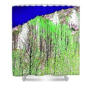 Impressions 12 Shower Curtain