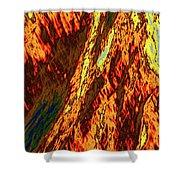 Impressions Of A Burning Forest 11 Shower Curtain