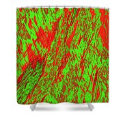 Impressions Of A Burning Forest 22 Shower Curtain
