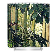 In A Bamboo Garden Shower Curtain