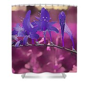 In A Pink World Shower Curtain