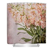 In A Vase #2 Shower Curtain