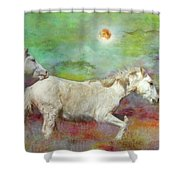 In Another Time Another Place... Shower Curtain