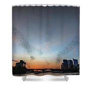 In Austin Streams Of Mexican Freetailed Bats The Worlds Largest Urban Bat Colony Take To The Skies During Sunset Shower Curtain