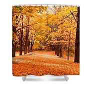 In Autumn Shower Curtain