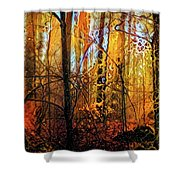 In Deep Woods Shower Curtain