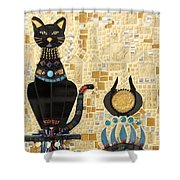 In Dreams Of Ricky Bobbie And Me In Egypt Shower Curtain