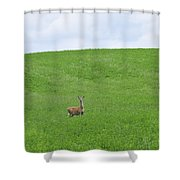 In Fields Of Green Shower Curtain