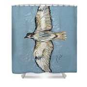 In Flight Shower Curtain