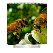 In For Landing Shower Curtain
