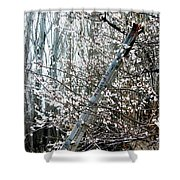 In Full Bloom Shower Curtain