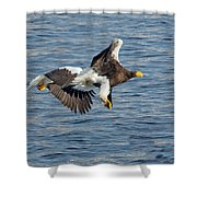 In Line Flying Shower Curtain
