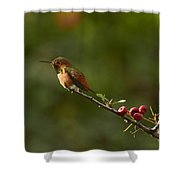 In Line With The Branch I Shower Curtain