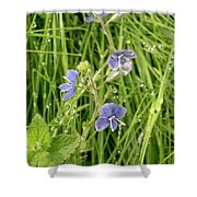 In Meadows. Shower Curtain