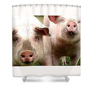 In Pig Times And Bad Times We Will Always Be Together  Shower Curtain