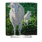 In Sheep's Clothing Shower Curtain