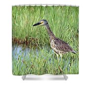 In Tall Grasses Shower Curtain