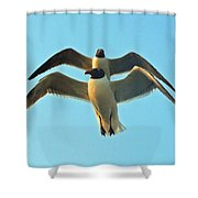 In Tandem At Sunset Shower Curtain
