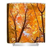 In The Autumn Mood  Shower Curtain