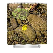 In The Autumn The Port Shower Curtain