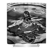 In The Beginning Bw Shower Curtain