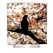 In The Cherry Tree Shower Curtain
