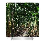 In The Corn  Shower Curtain