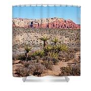 In The Desert Shower Curtain