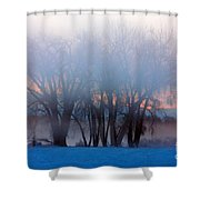 In The Fog At Sunrise Shower Curtain