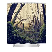 In The Forest Of Dreams Shower Curtain