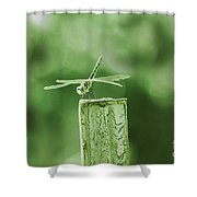 In The Green Shower Curtain