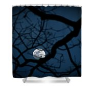 In The Light Of Night Shower Curtain