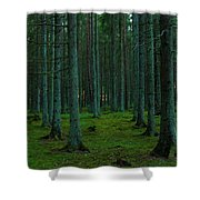 In The Middle Of The Forest Shower Curtain