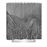 In The Moment Bw  Shower Curtain